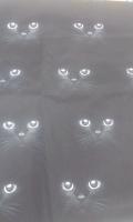 juodi kačiukai